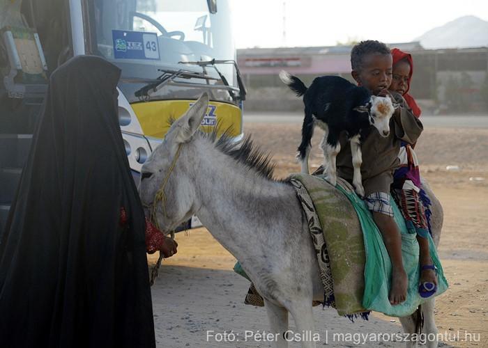 Beduin család sivatag